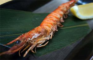 【威海运都】☆活体日本对虾出口加工技术