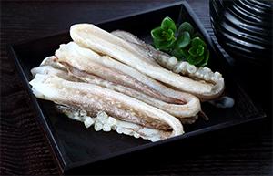 【威海运都】☆鱿鱼系列